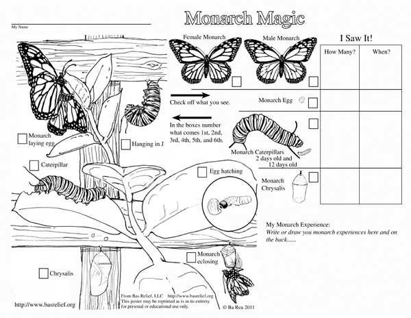 Monarch Magic Coloring Page